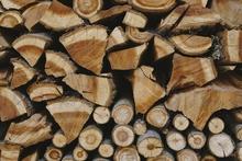 Visuel filière bois