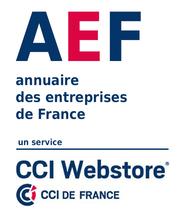 aef_webstore.png