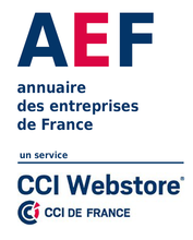 aef_webstore.png