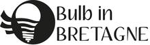Bulb in Bretagne